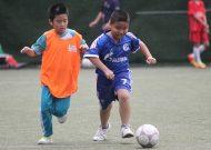 Festival bóng đá học đường khối Tiểu học Quận Phú Nhuận - TPHCM, năm học 2016 - 2017