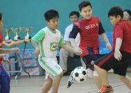 Festival bóng đá học đường khối Tiểu học, Quận 6 - TPHCM, năm học 2016 - 2017